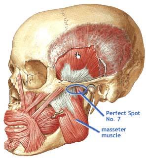 adur osteopathic clinic » CLUSTER HEADACHE